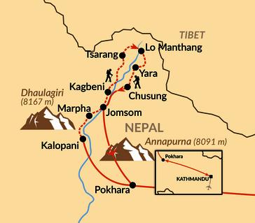 Karte: Mystisches Königreich Mustang