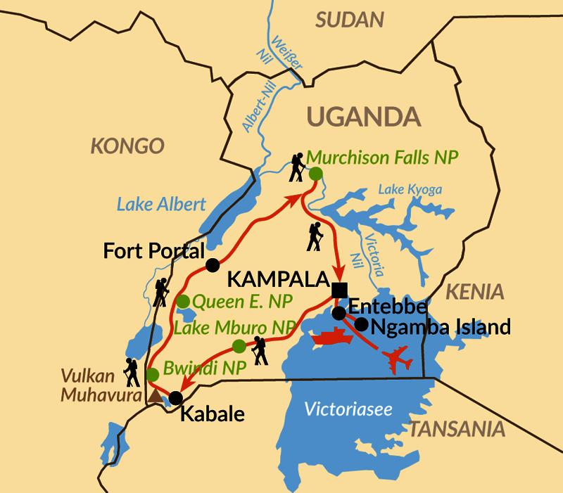 Karte: Gorillas im Nebel