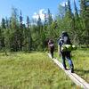 Sommercamp Idre – Wildniswoche