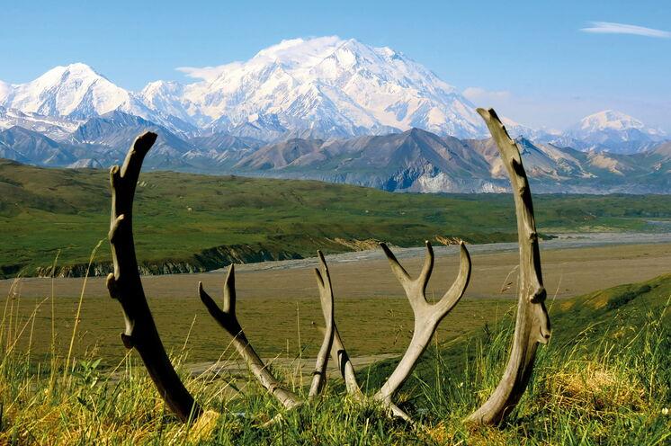Der Denali ist mit 6190 Metern Höhe der höchste Berg Nordamerikas