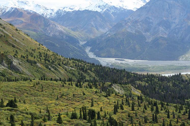 Der Kluane-Nationalpark – eisige Wildnis mit riesigen Gletscherfeldern im Südwesten des Yukon-Gebietes