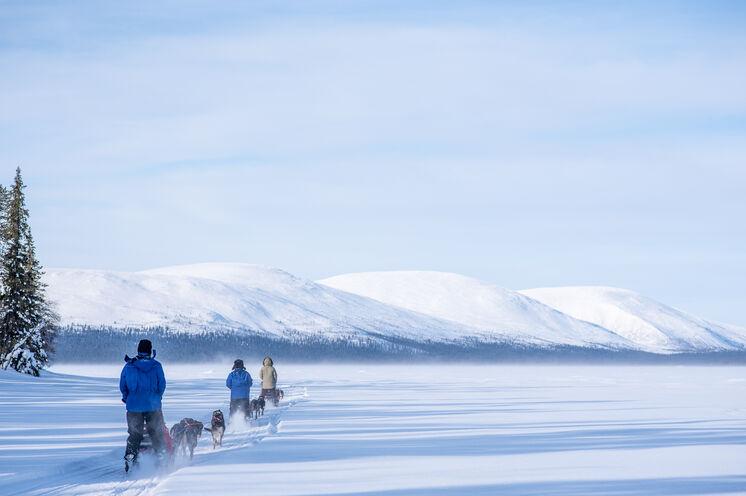 """Sie führen den Schlitten entlang der Kette von """"Tunturis"""" (Fjälls), den flachen, rundköpfigen Bergen Finnisch-Lapplands"""
