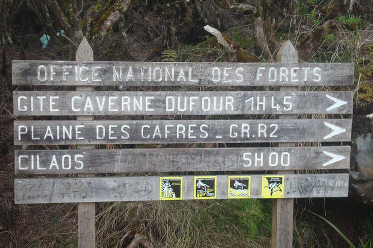 Auf dem Weg von Belouve zur Berghütte am Piton des Neiges