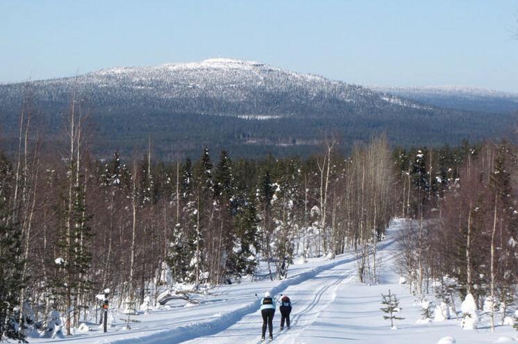 Anfahrt ins Syöte-Skigebiet, vorn der Berg Iso Syöte.