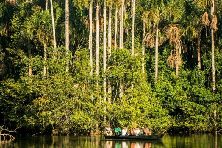 Verlängerungstipp: 4-Tage-Amazonas (PER01)