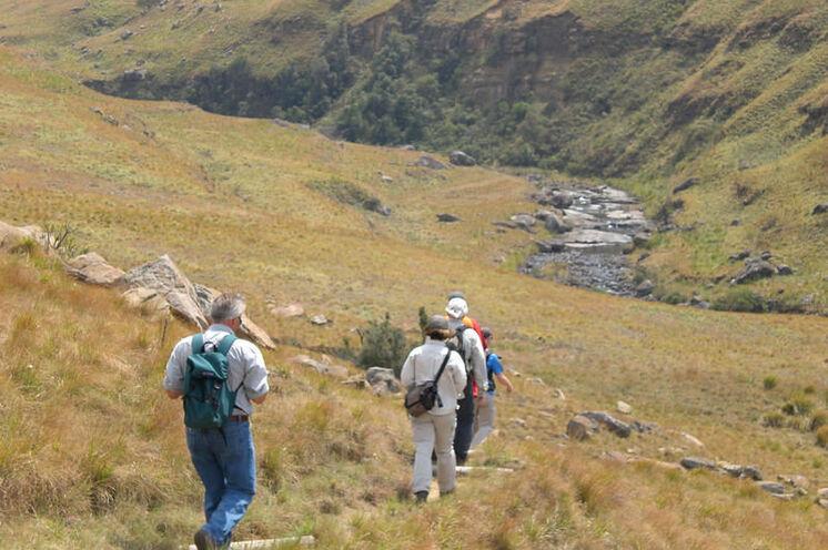Während einer Wanderung erkunden Sie am 11. Tag die Drakensberge (bis zu 3482 m hoch).