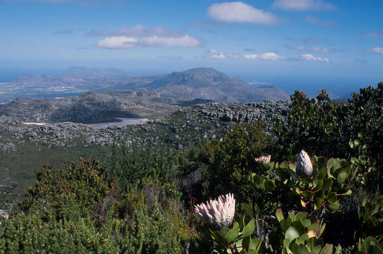 Blick vom Plateau des Tafelberges gen Süden