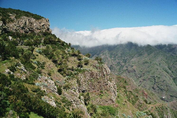 Passatwolken im Inselinneren