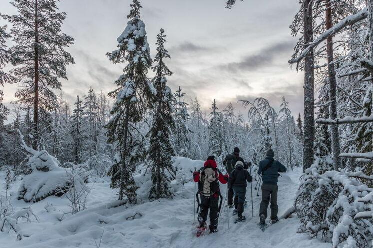 Am freien Tag können Sie auf eine Schneeschuhwanderung gehen