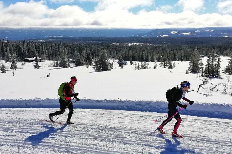 20 Kilometer der Strecke führen durch Fjellgebiet über der Baumgrenze mit offenen Flächen