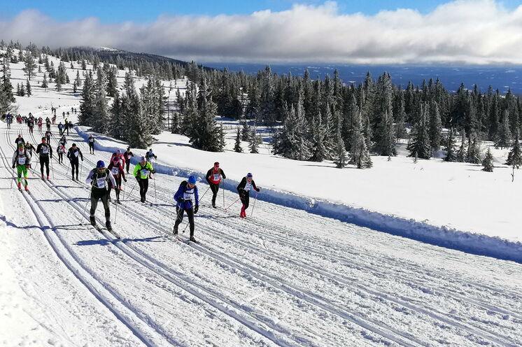 Birkebeiner 2019 - das Wetter war auf den Punkt perfekt. Geniale Ausblicke waren allen Skienthusiasten garantiert