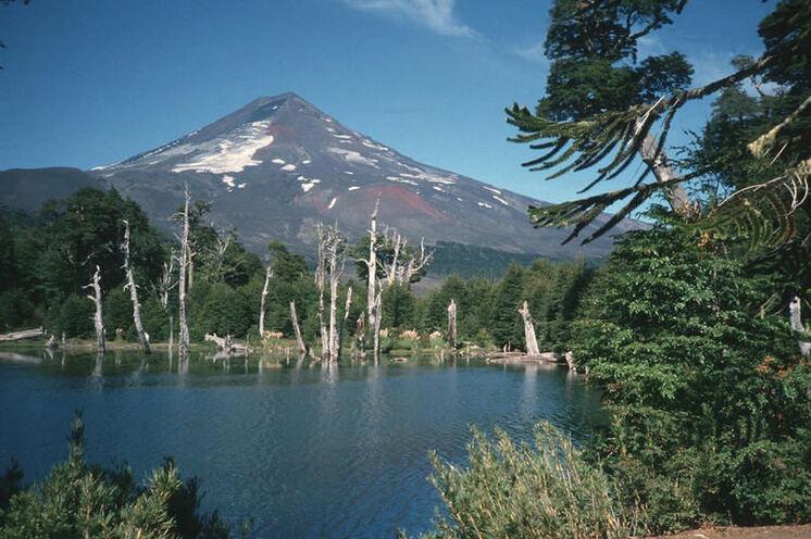 Der Vulkan Llaima im Conguillío Nationalpark  - er gehört zu den aktivsten Vulkanen Chiles.
