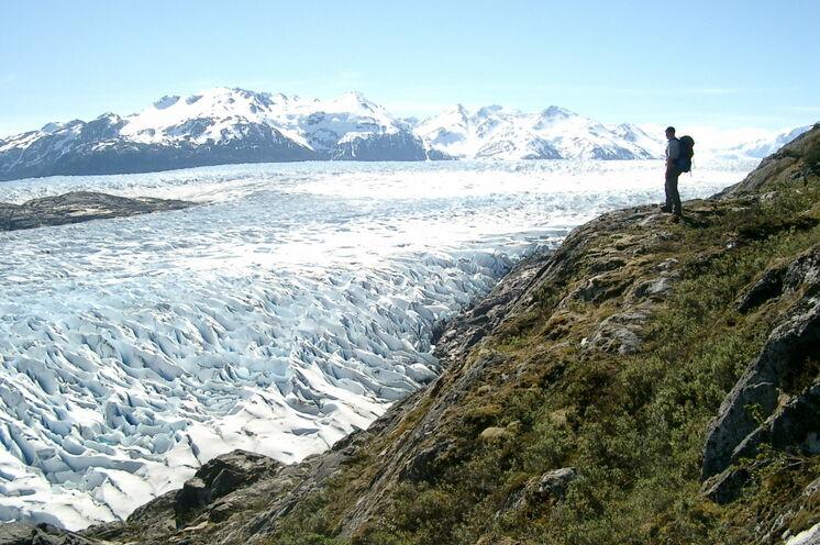 Rast mit Aussicht auf den Grey-Gletscher