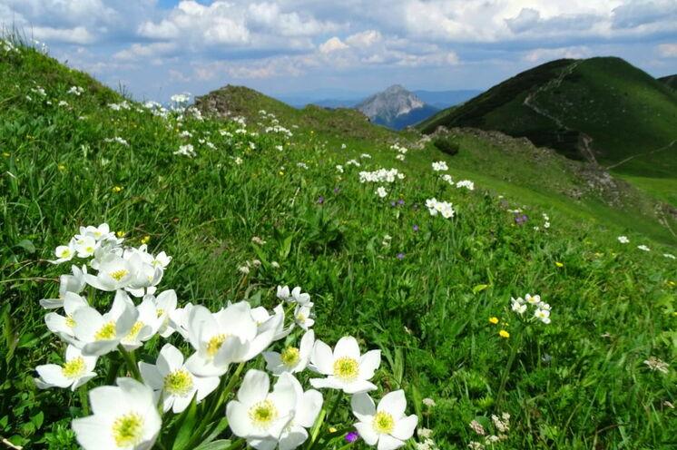 Mala Fatra - ein Geheimtipp für Natur- und Wanderfreunde