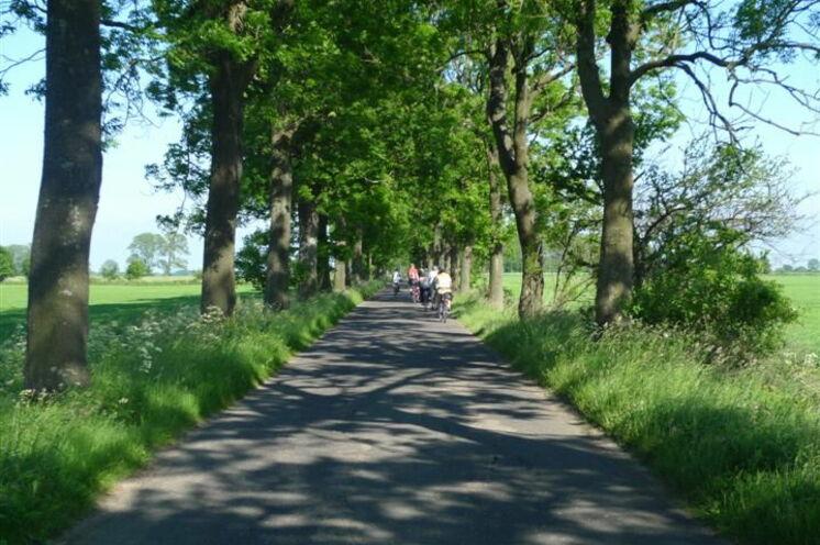Mit dem Rad fahren Sie mal auf Feld- oder Waldwegen, abgelegenen Straßen oder kleinen Naturpfaden oft entlang der Küste