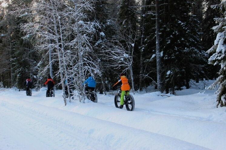 Ein neues Erlebnis: eine winterliche Radtour mit den Fatbikes