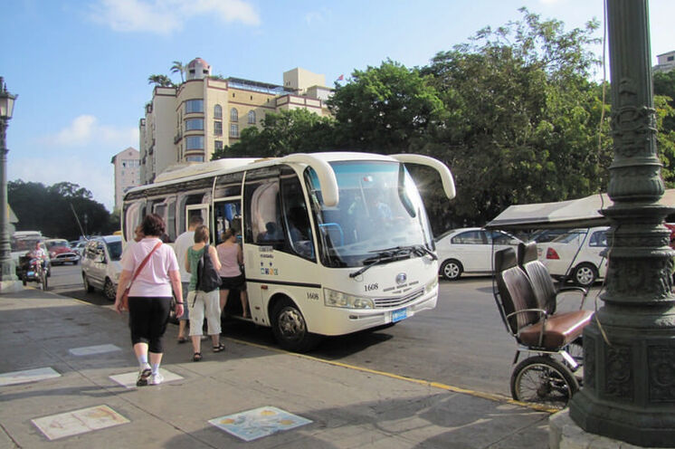 Mit einem Kleinbus wie diesem werden Sie unterwegs sein.