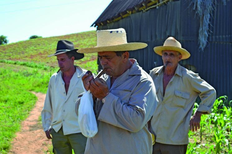 Wanderung u.a. zu einem Tabakbauer.