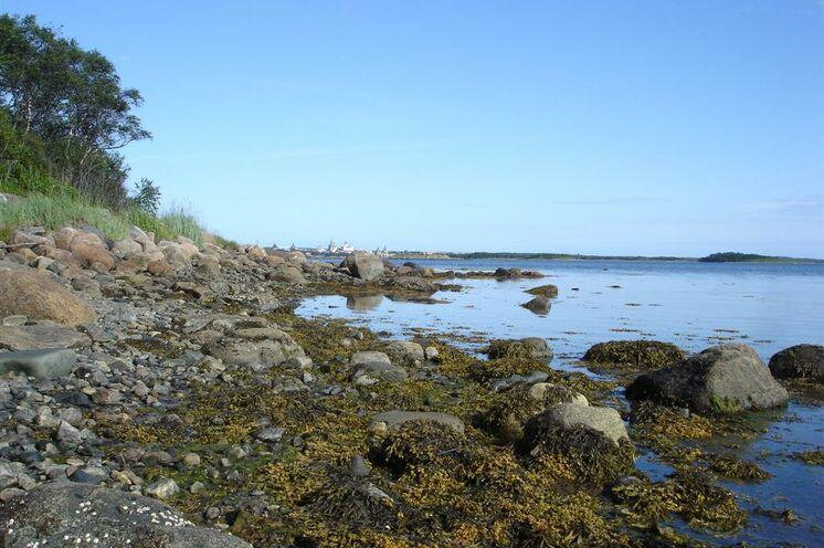 Raue und sehr schöne Natur der Solowezki-Inseln