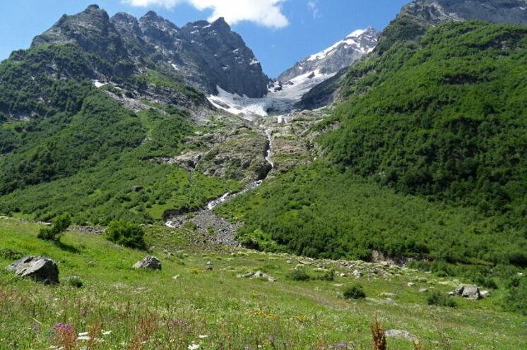 Charakteristisch für den Kaukasus - saftig grüne Wiesen führen bis unmittelbar an den Gletscherrand.
