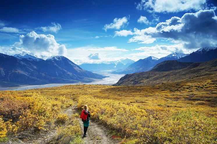 Den Yukon zu einer der schönsten Zeit des Jahres erleben: im Indian Summer!