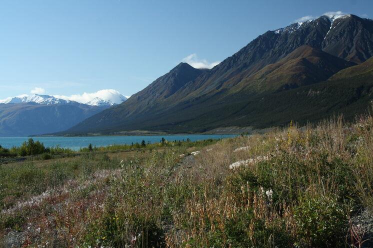 Der Kluane Lake bietet mit seinem schimmernden Blau ein herrliches Fotomotiv