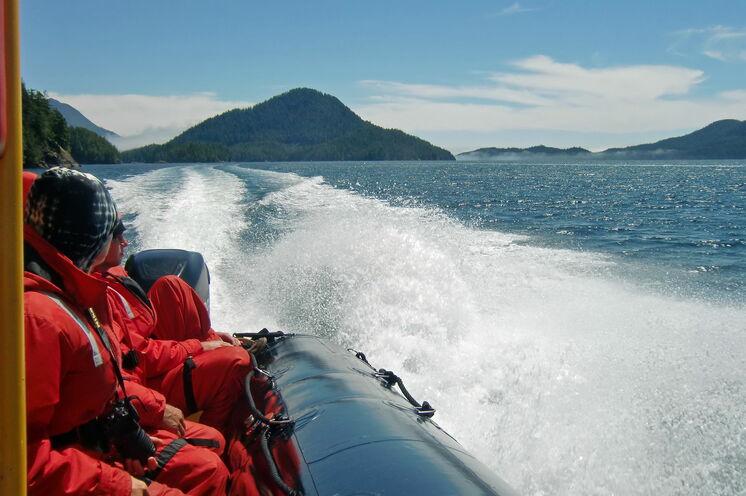 In Tofino auf Vancouver Island gehen Sie auf Bootstour und erspähen mit etwas Glück Wale, Delfine und Seelöwen