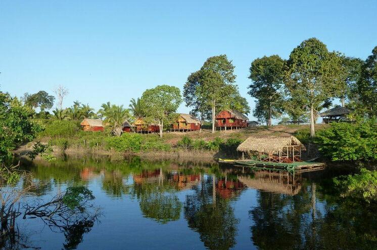 Die Reise beginnt in Manaus. Per Boot geht dann ca. 100 km hinein in den Dschungel zu Ihrer rustikale Lodge.