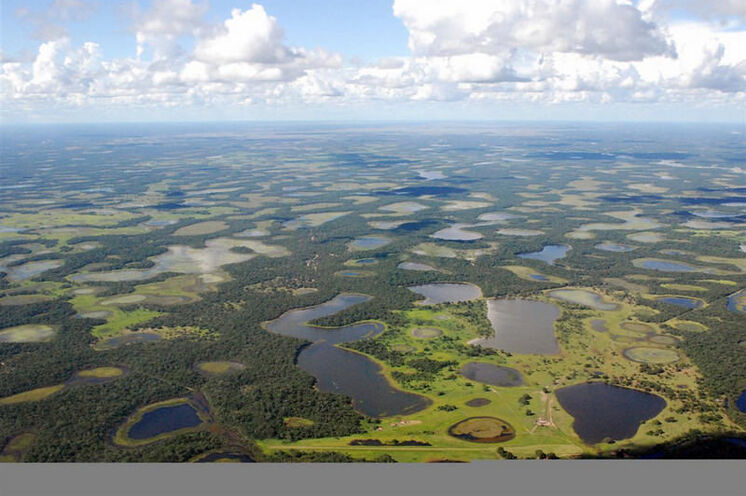Das Pantanal erstreckt sich auf einer Fläche von ungefähr 230.000 km² (Foto mit freundlicher Genehmigung von Lucas Leuzinger)