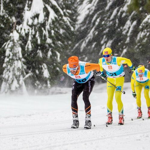 Skimarathon Jizerská padesátka - Isergebirgslauf 2020