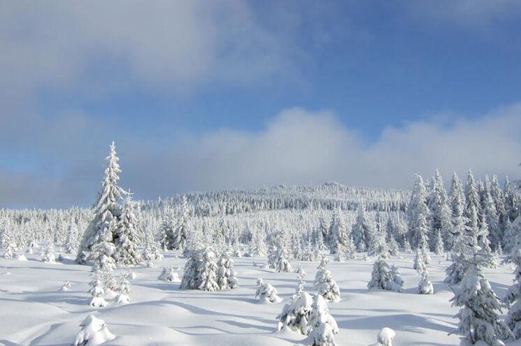 Damit vollzieht man die zweite Hälfte der Umrundung des Jizera als zweithöchster Berg des Isergebirges (1122 m).