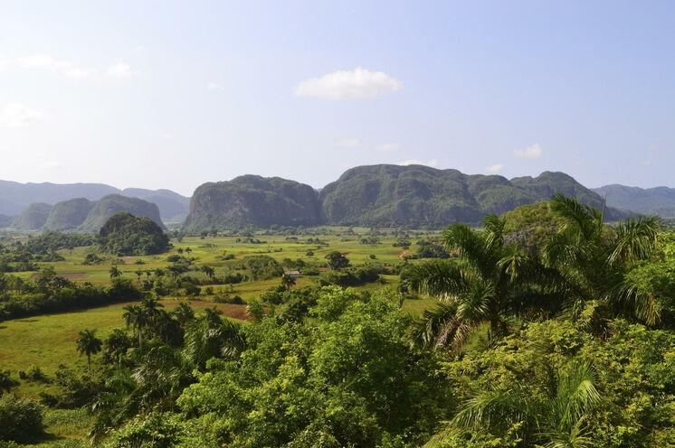 Zu Fuß entdecken Sie auf dieser Wanderreise schöne Naturräume, wie z.B. das grüne Viñalestal mit seinen typischen Mogotes