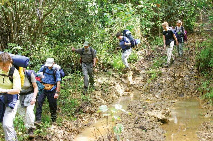 Im Topes de Collantes NP  ist zur Regenzeit Trittsicherheit gefragt - belohnt wird man mit üppiger Natur