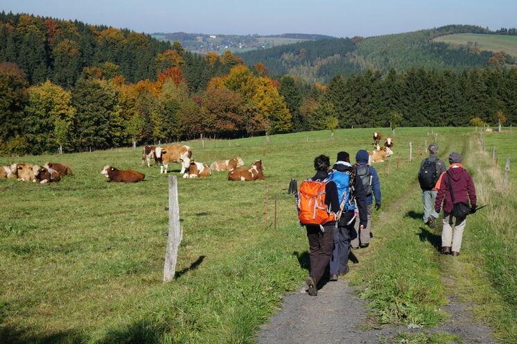Die Landschaft des Osterzgebirges ...