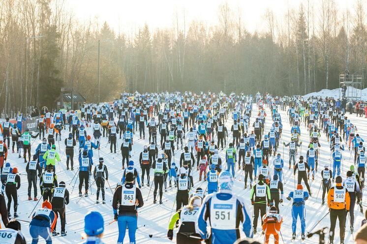 Das Besondere am Tartu-Marathon: hervorragend präparierte Loipen!