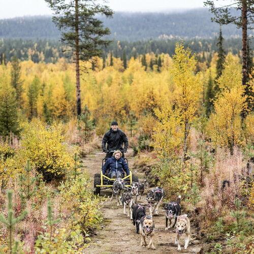 Lappland per Kanu, mit Huskys und zu Fuß