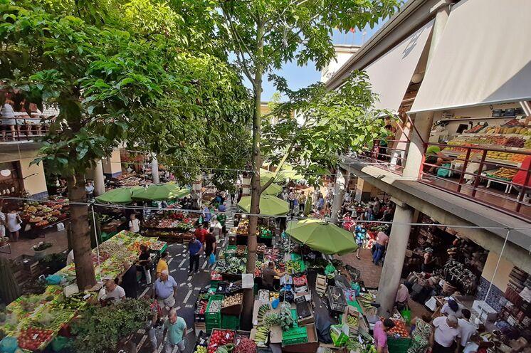 Zur Stadtbesichtigung gehört auch ein Besuch der Markthalle mit vielen exotischen Früchten und Produkten der Region.