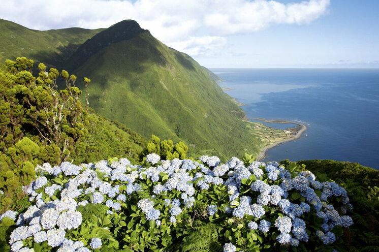 Während unserer Wanderreise auf den Inseln Faial, São Jorge und Pico kommen Naturliebhaber und Wanderfreunde auf ihre Kosten. Genießen Sie einmalige Ausblicke, wie hier  auf die grüne Küstelinie von São Jorge.