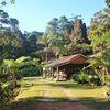 Verlängerung: Atlantischer Regenwald – das grüne Herz Brasiliens