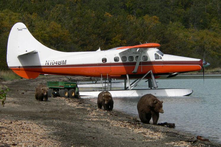 Mit dem Wasserflugzeug geht es für Sie in den Katmai-Nationalpark