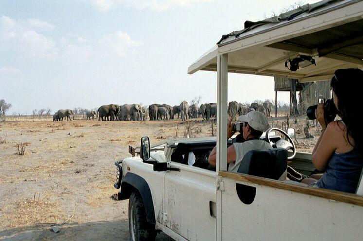 Auf Pirsch im speziell umgebauten Safarifahrzeug mit viel freier Sicht zum Beobachten und Fotografieren.