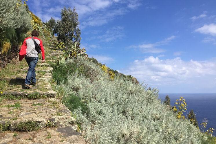 Alicudi ist die Insel der vielen Treppen. Sie wandern in idyllischer Ruhe mit Meerblick