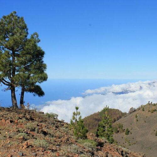 """La Palma – """"Isla Bonita"""""""