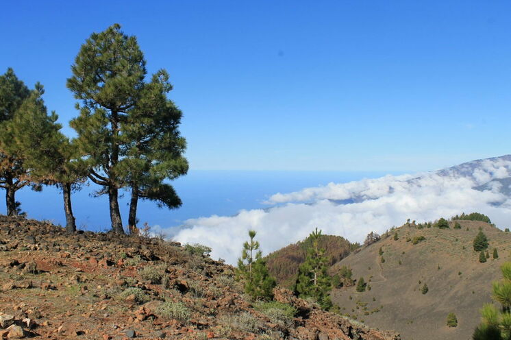 Blick von der Ruta de los Volcanos auf die herannahenden Passatwolken