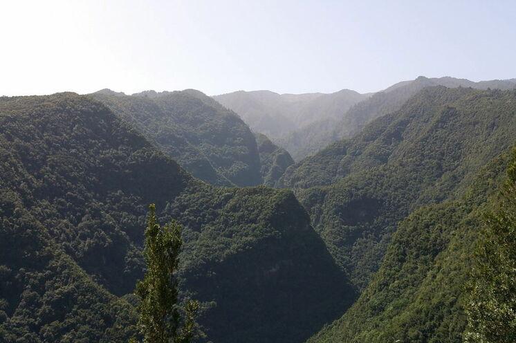 Imposante, grüne Schluchten im Norden der Insel