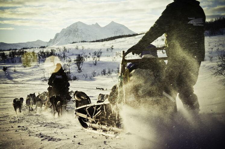 ...ein unvergessliches Erlebnis. Einmal selbst einen Hundeschlitten nördlich des Polarkreises lenken.