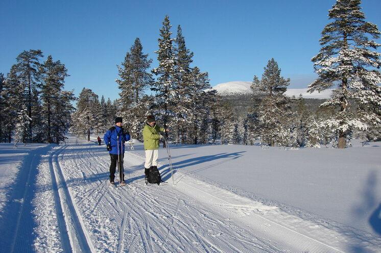Ski fahren in der Winterwunderwelt