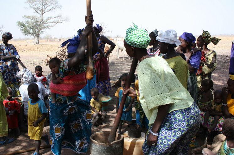 Ein Bild, überall im Senegal anzutreffen. Frauen beim Hirsestampfen.