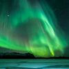 Wintererlebnis Lappland und Lofoten