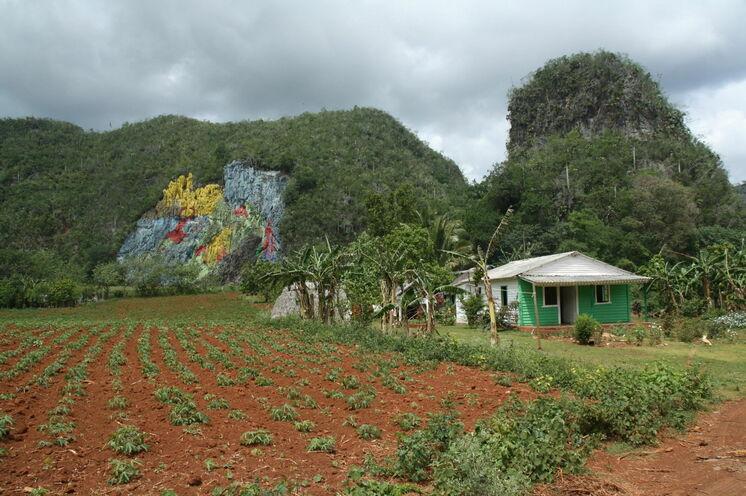 Das große Wandgemälde im Viñalestal
